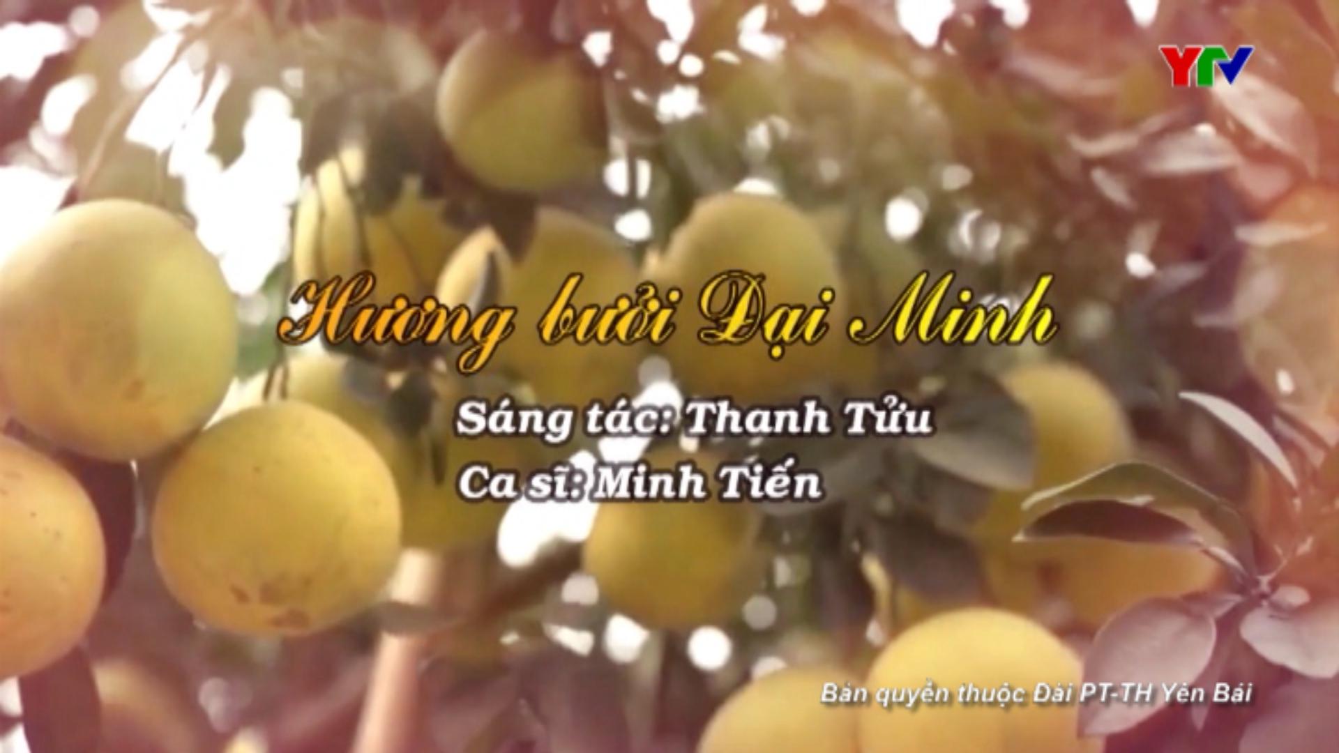 """Giới thiệu ca khúc """"Hương Bưởi Đại Minh"""""""