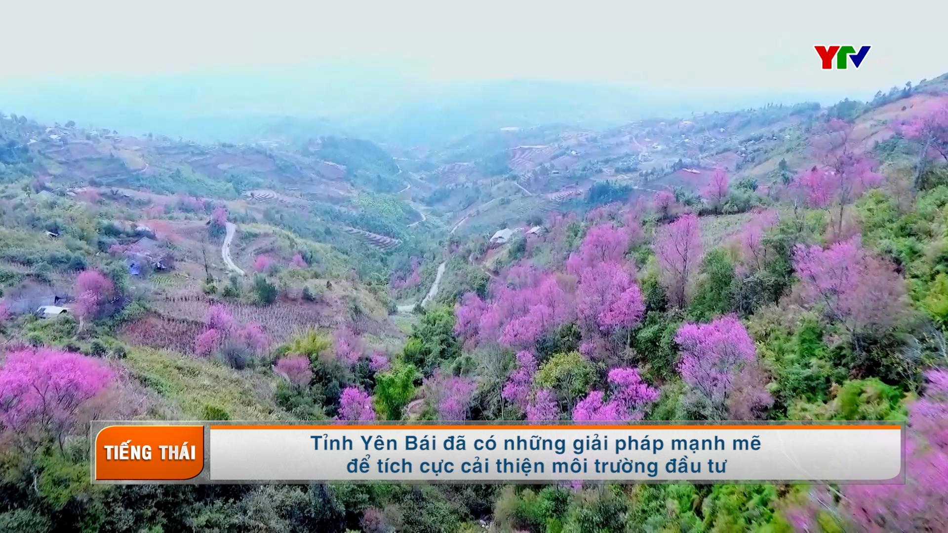 Truyền hình tiếng Thái số 3 tháng 3 năm 2021