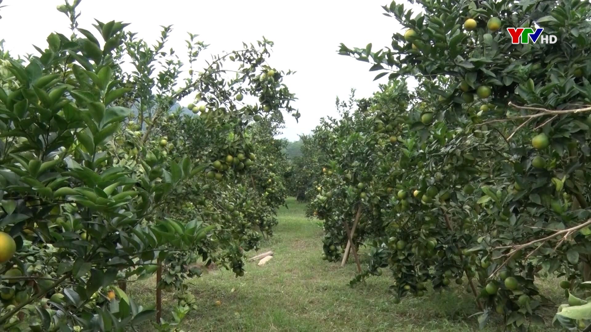 Xã Thượng Bằng La nỗ lực xây dựng nông thôn mới nâng cao