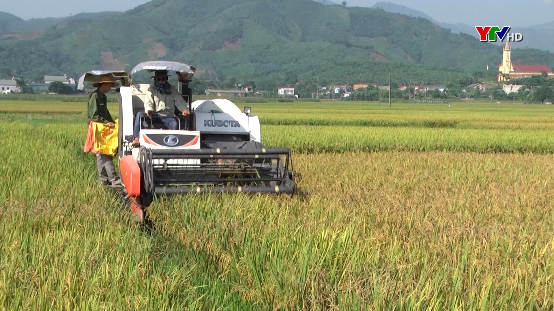 Văn Yên phấn đấu có 5 xã đạt chuẩn nông thôn mới trong năm 2021