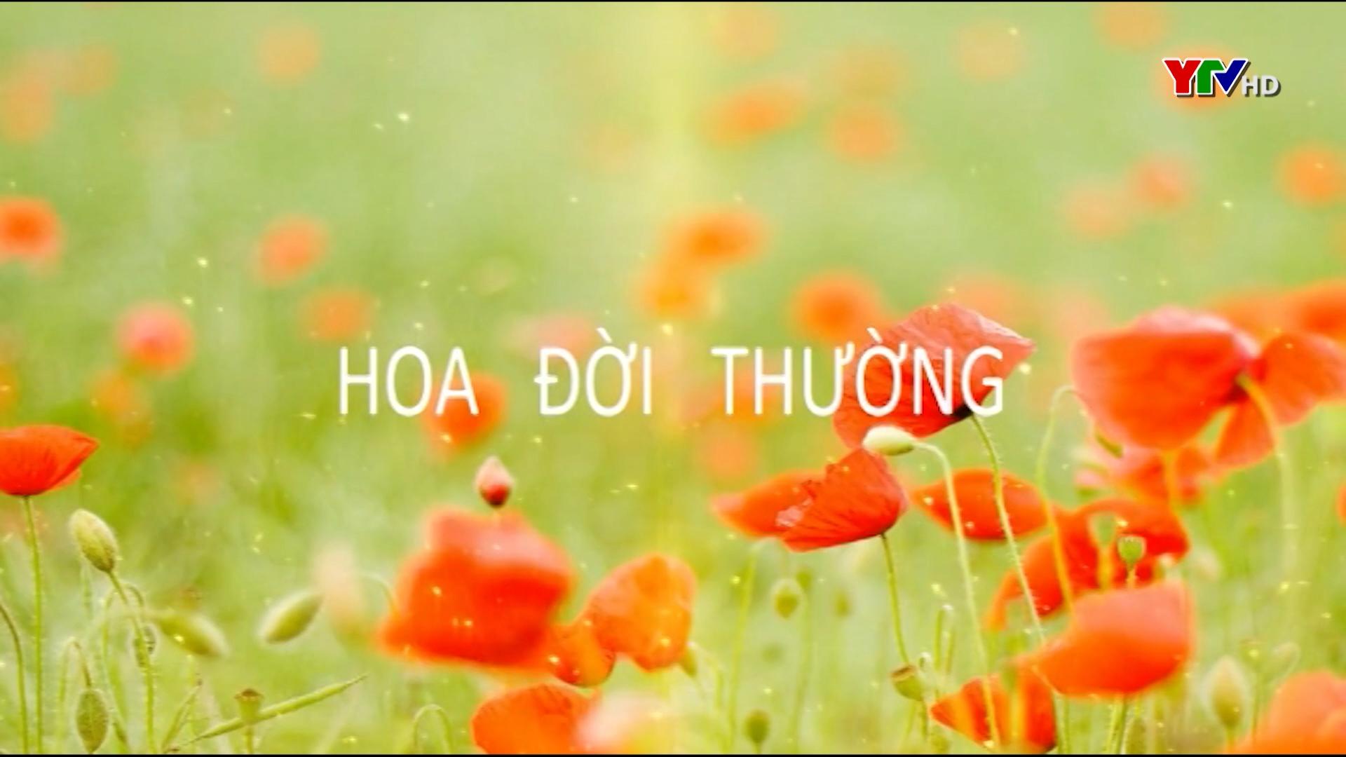 Giảng viên Nguyễn Thu Hương - Người truyền cảm hứng cho sinh viên