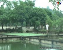 Xã Vân Hội huyện Trấn Yên với nghị quyết phát triển thủy sản