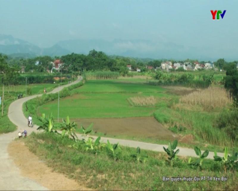 Nông dân - chủ thể xây dựng nông thôn mới