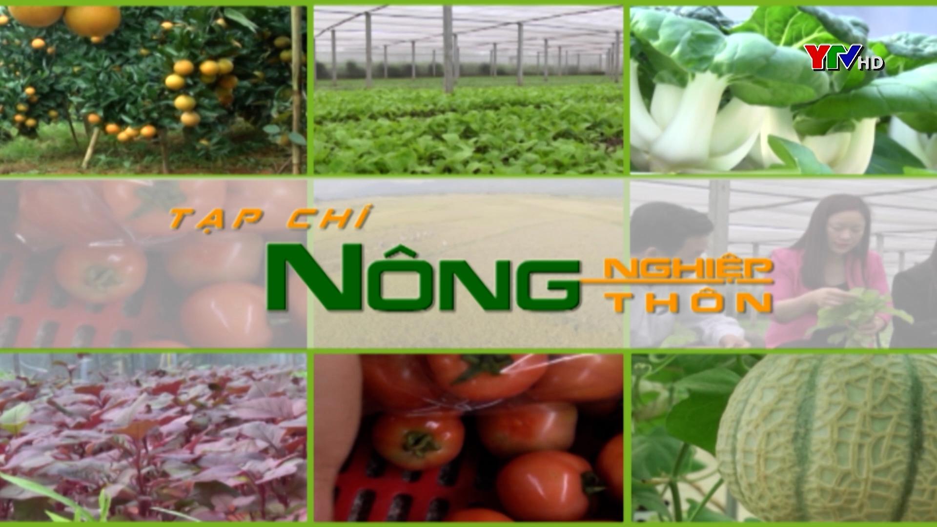 OCOP – Sức bật trong phát triển nông nghiệp nông thôn