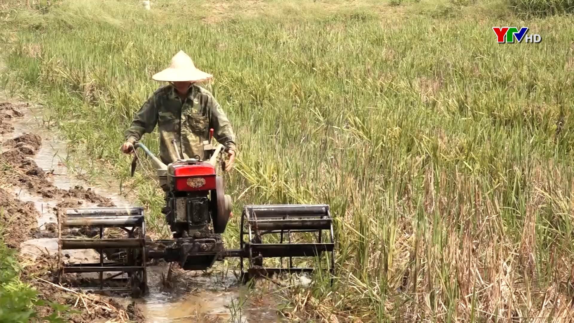 Huyện Lục Yên tập trung sản xuất vụ mùa