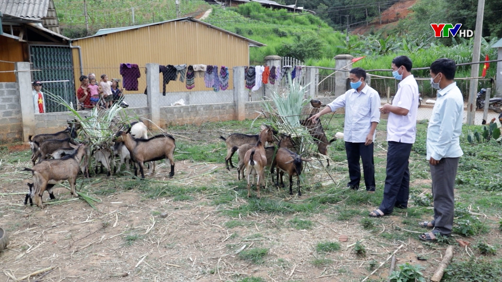 Chính sách hỗ trợ sản xuất nông nghiệp – Đòn bẩy giúp đồng bào vùng cao thoát nghèo