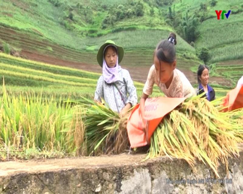 Đẩy mạnh phát triển kinh tế trong xây dựng nông thôn mới