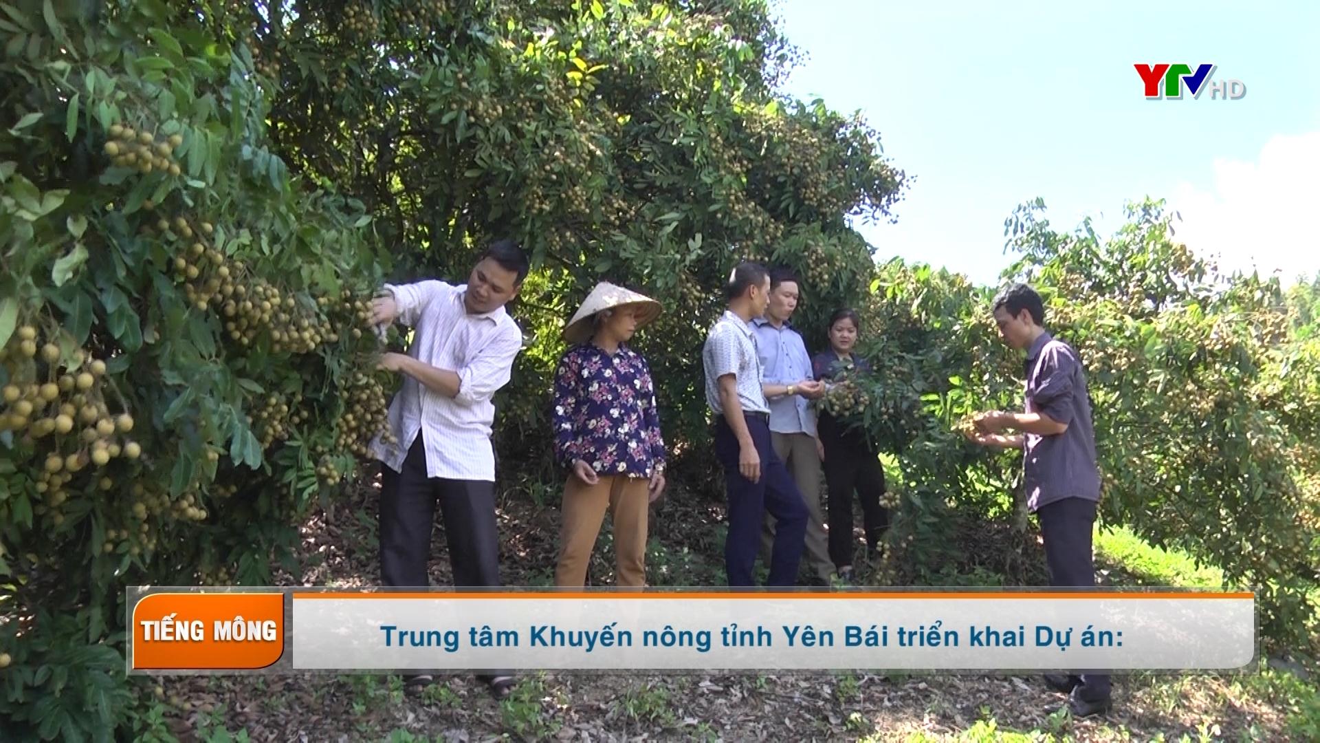 Tạp chí truyền hình tiếng Mông số 3 tháng 8 năm 2020
