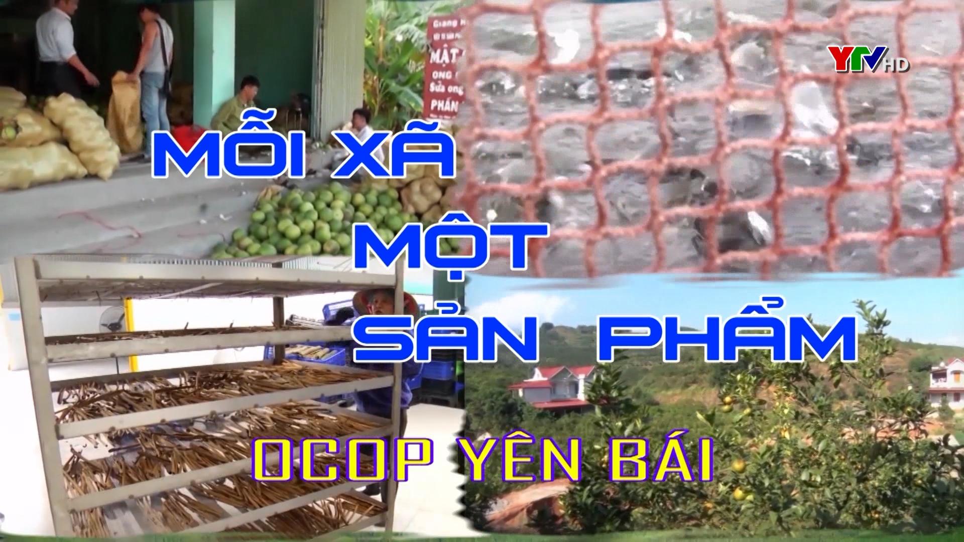 Sản phẩm OCOP gạo Séng Cù Mường Lò