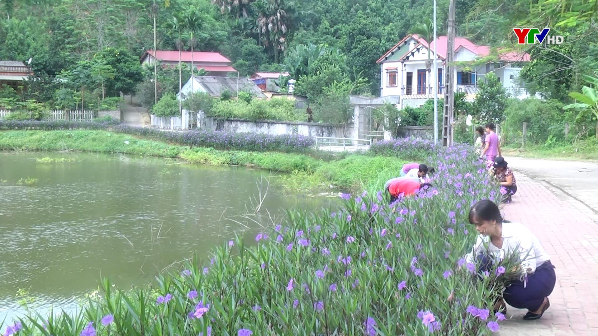 Phụ nữ Yên Bái xây dựng môi trường xanh, sạch, đẹp