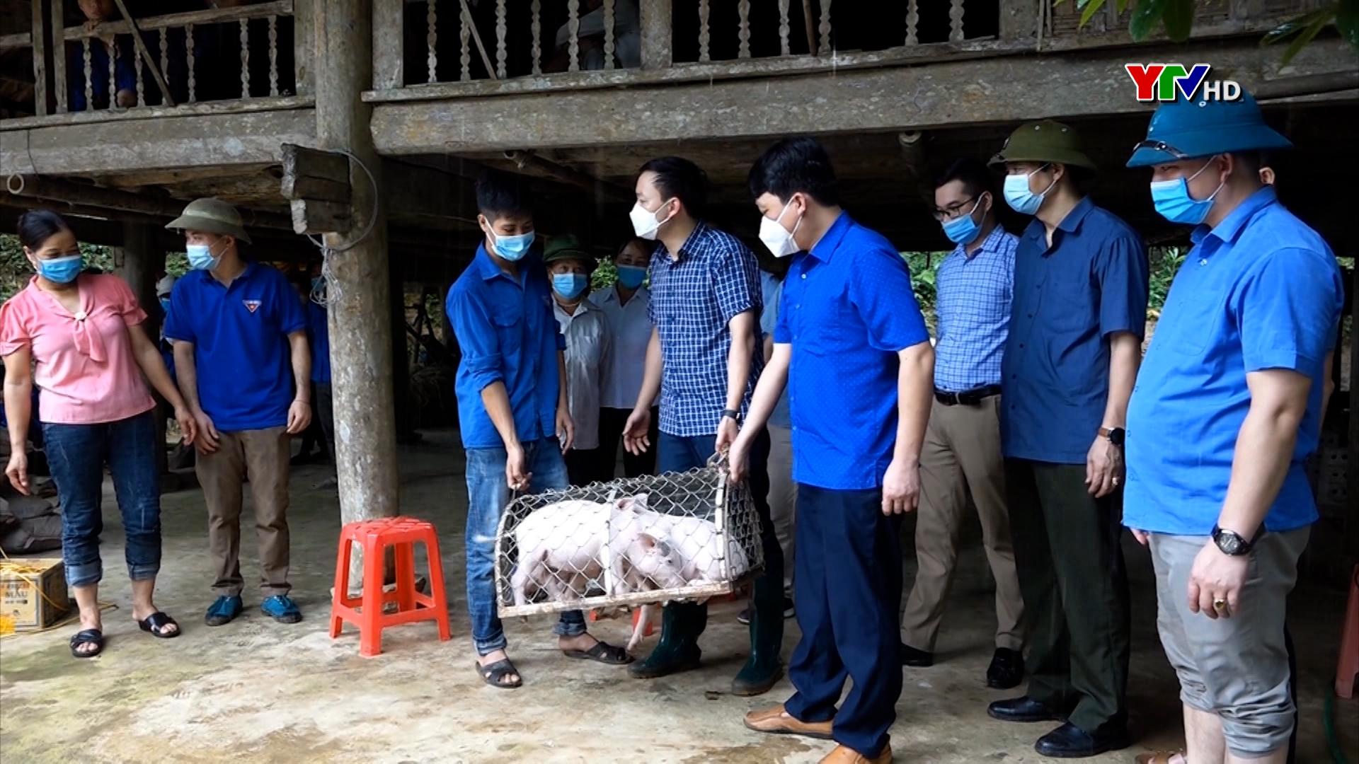 Đảng bộ huyện Yên Bình  phát huy vai trò cấp ủy phụ trách cơ sở