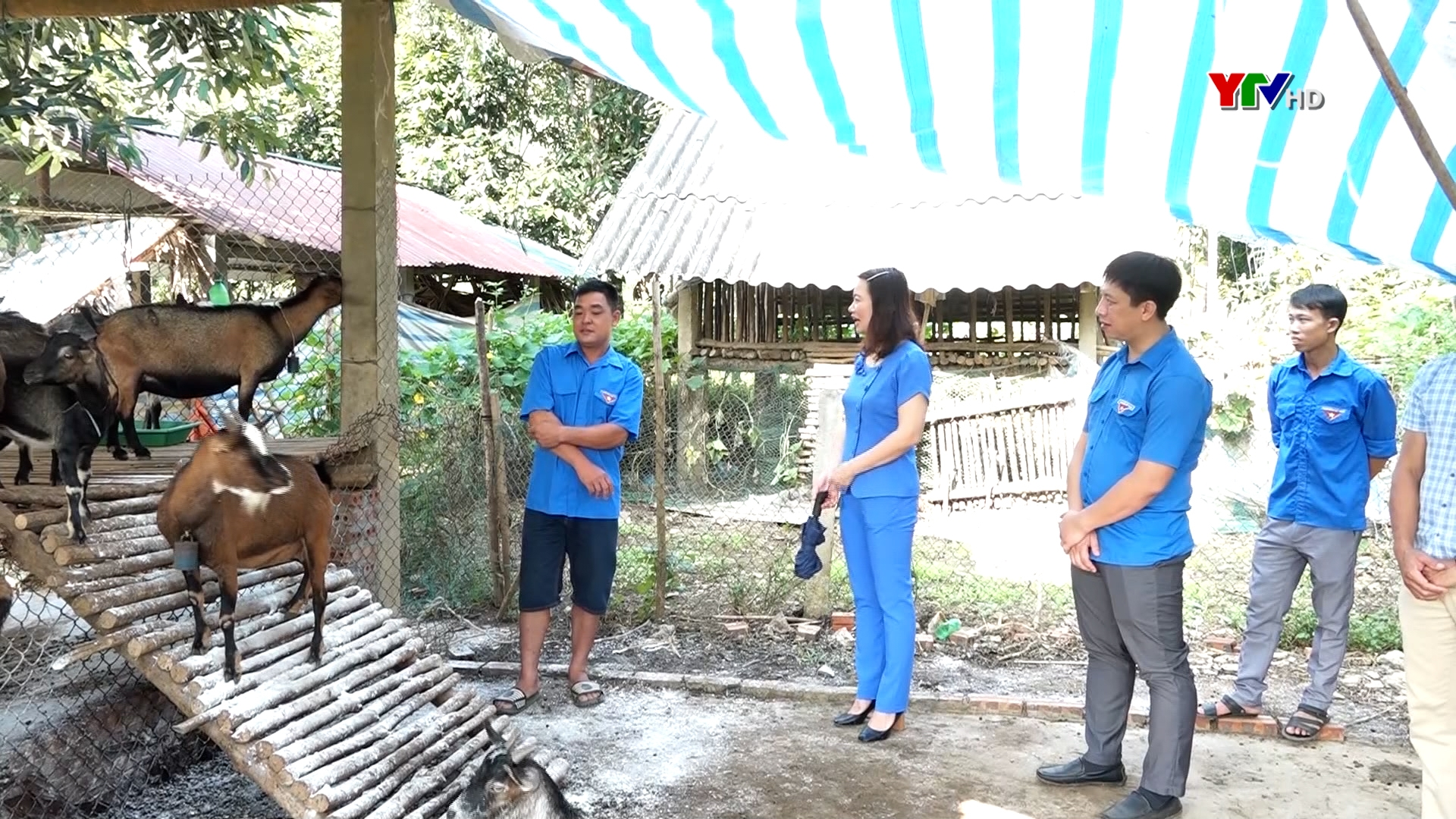 Lan tỏa phong trào khởi nghiệp trong đoàn viên thanh niên huyện Văn Yên