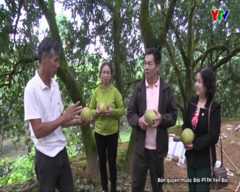 Phát huy vai trò chủ thể của nông dân trong phát triển nông nghiệp và xây dựng NTM
