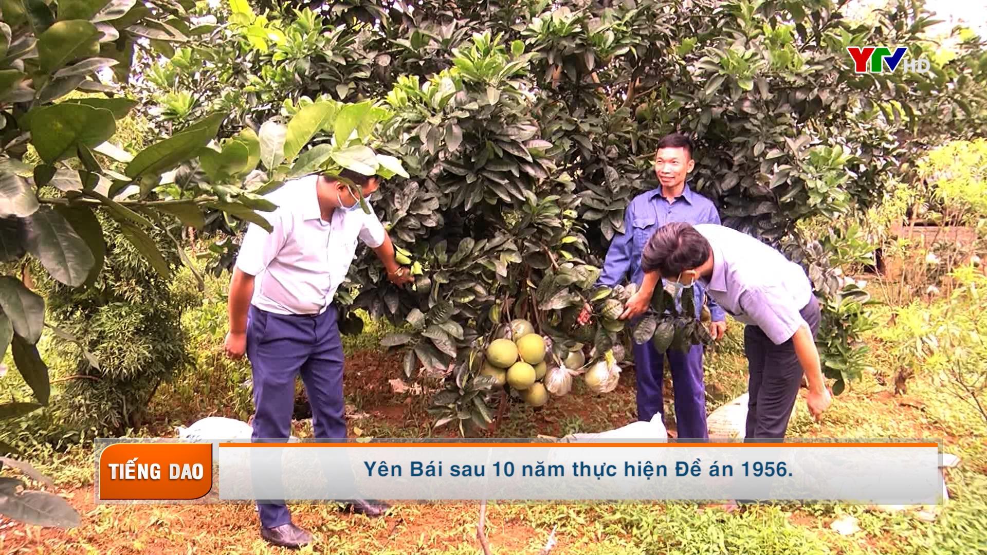 Truyền hình tiếng Dao số 3 tháng 11 năm 2020
