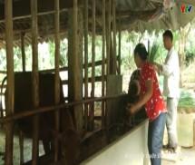 """Hiệu quả hoạt động bộ phận """"một cửa"""" ở huyện Văn Yên"""