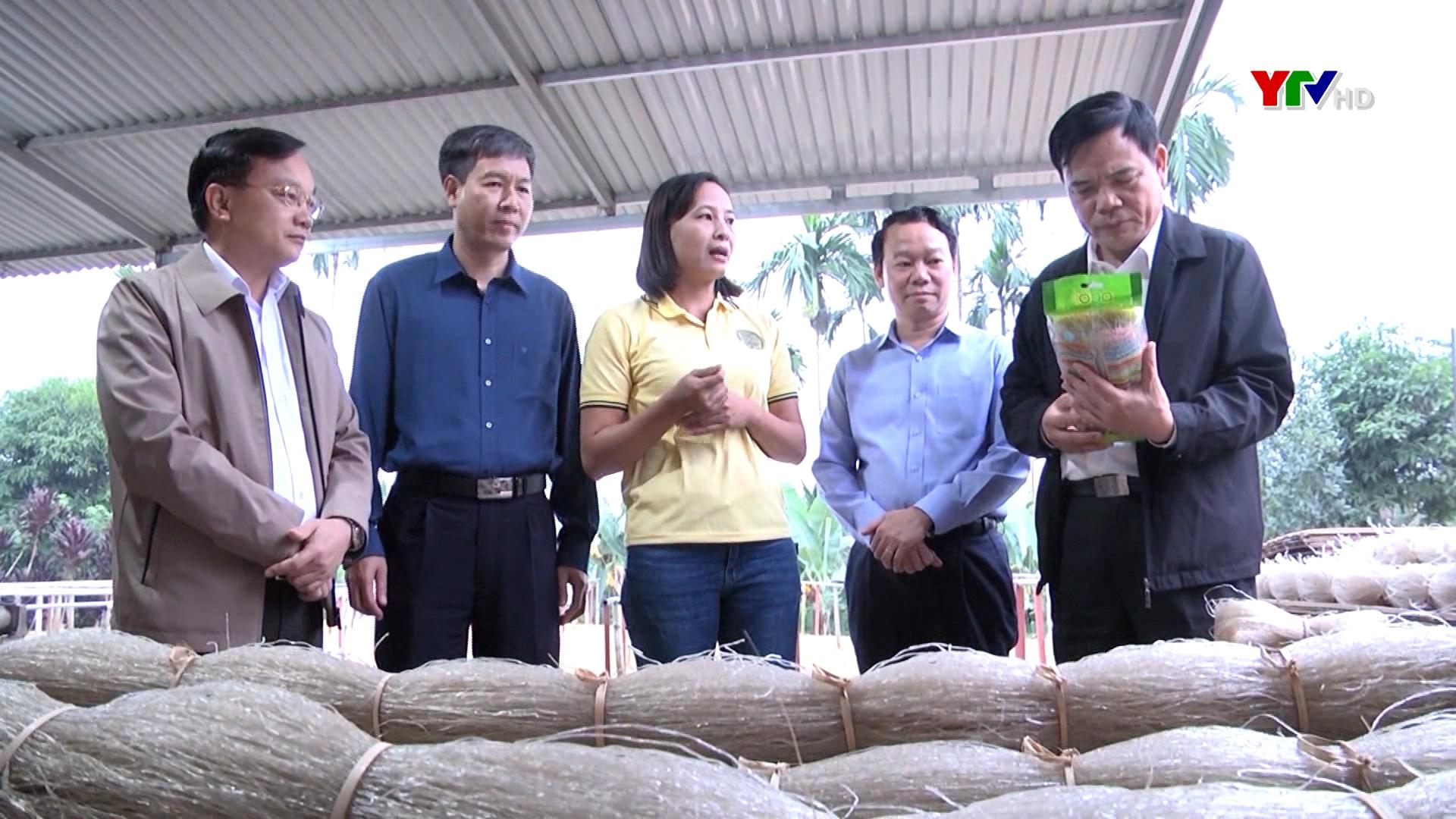 Bộ trưởng Bộ Nông nghiệp và Phát triển nông thôn Nguyễn Xuân Cường thăm một số mô hình sản xuất nông nghiệp tại tỉnh Yên Bái